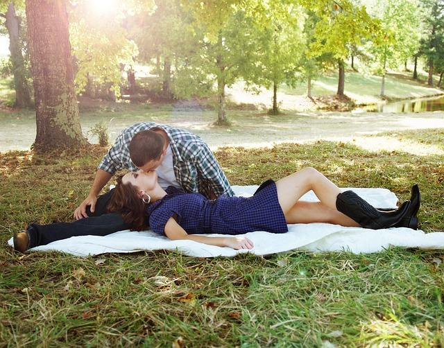 romantika u stromu