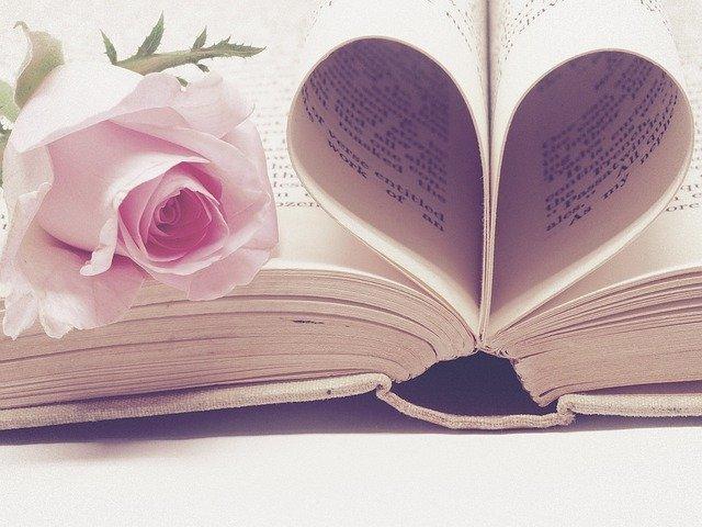 knížní vazba